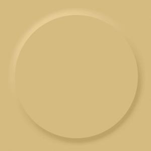 Circular Disc Rubber Stair Tread Eagle Mat